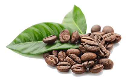 Natural Caffeine Anhydrous
